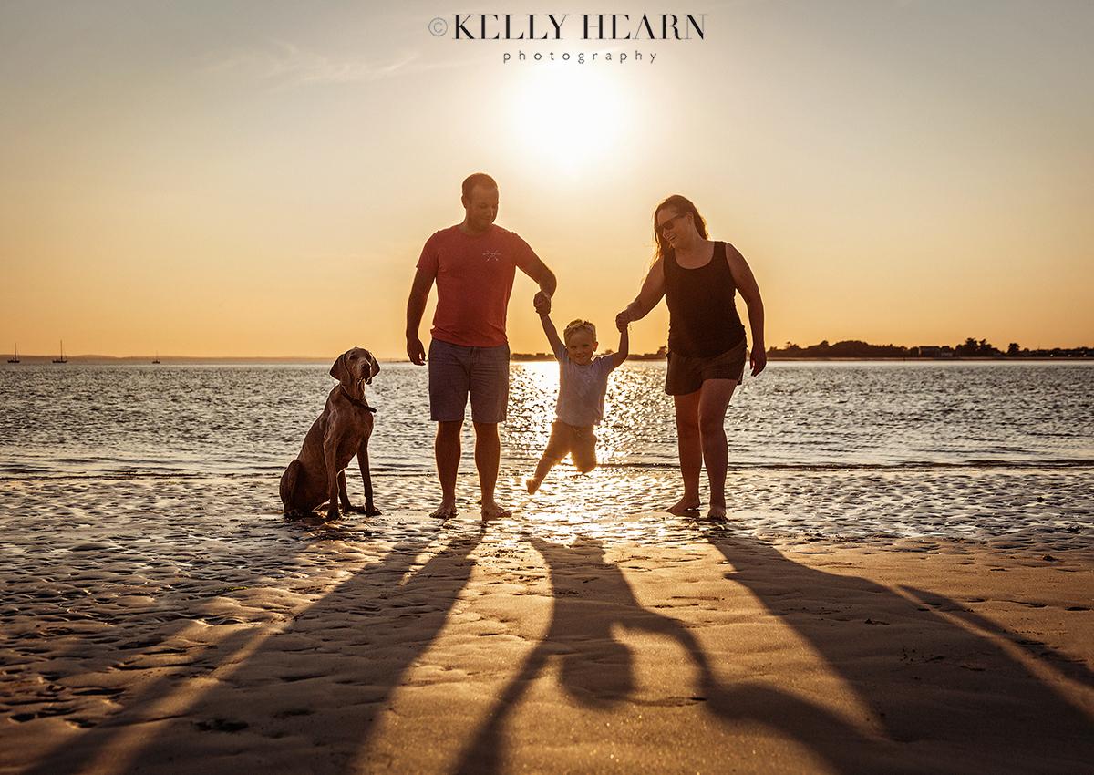 DOG_family-portrait-beach.jpg#asset:2995