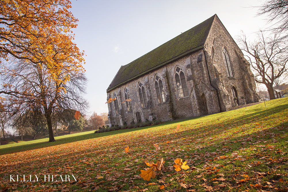 WIC_guildhall-outside-autumn-leaves.jpg#asset:2414